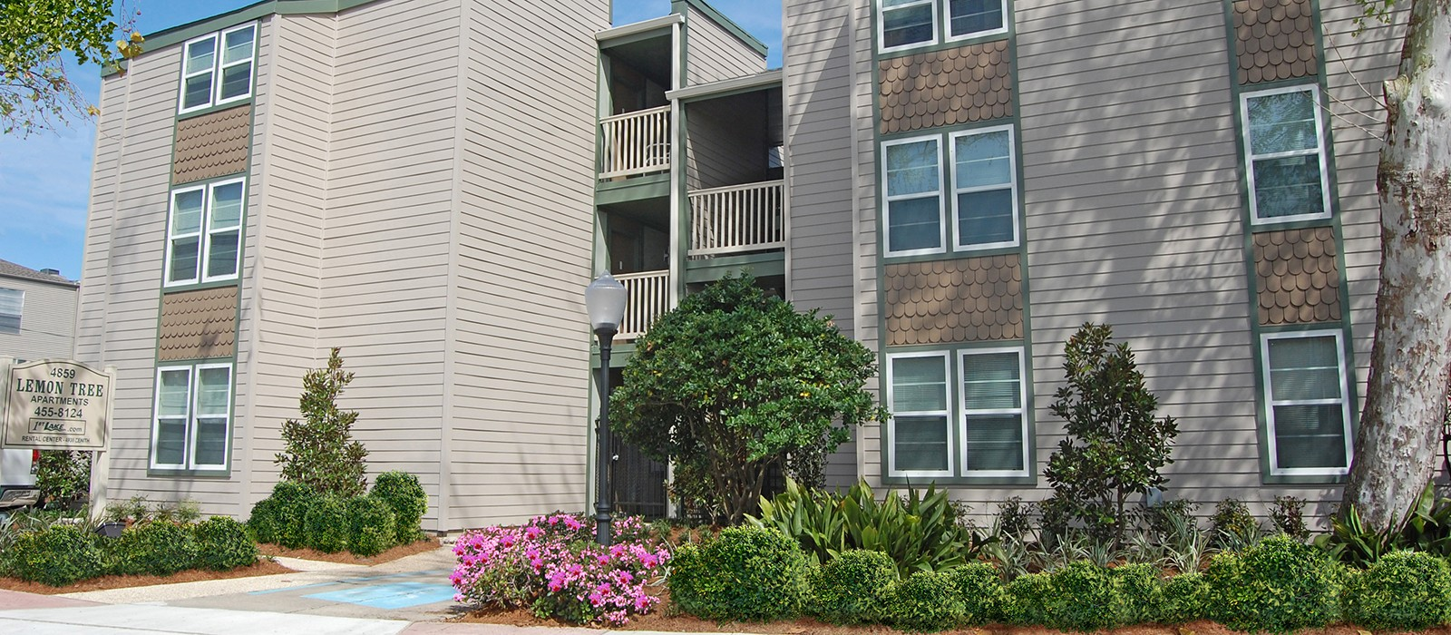 Lemon Tree Apartments In Metairie La 1 2 Bedroom Apartments For Rent 1st Lake Properties