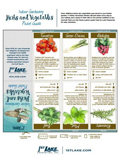 Print this free indoor garden pocket guide to herbs and vegetables. It will come in handy when you're shopping at the garden center! Head to 1stlake.com to learn about the best types of indoor plants, plus tips for caring for them.