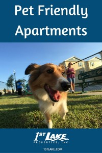 Find thousands of pet friendly apartments near New Orleans at 1st Lake Properties. via 1stlake.com