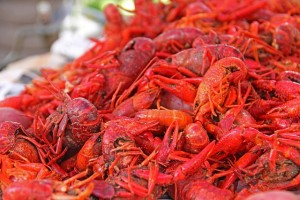 crawfish-169694_640