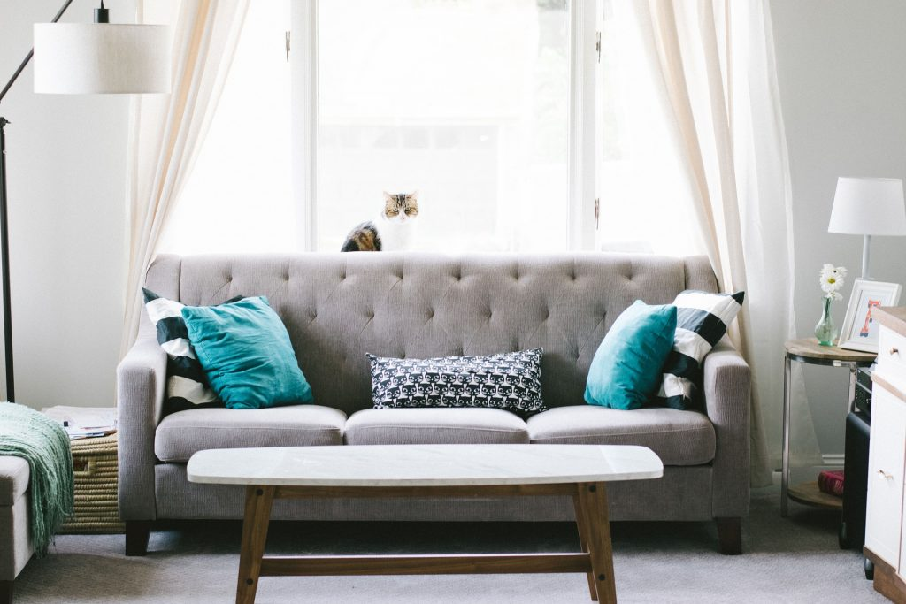 1st Lake | Decorating on a Budget: 5 New Orleans Thrift Stores Worth ...